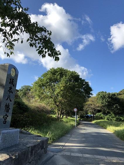 坂本八幡宮への道