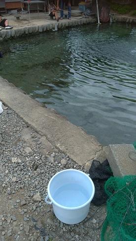 浮羽つりぼりのバケツと釣り開始